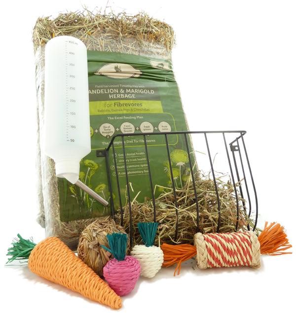 The rabbit starter kit
