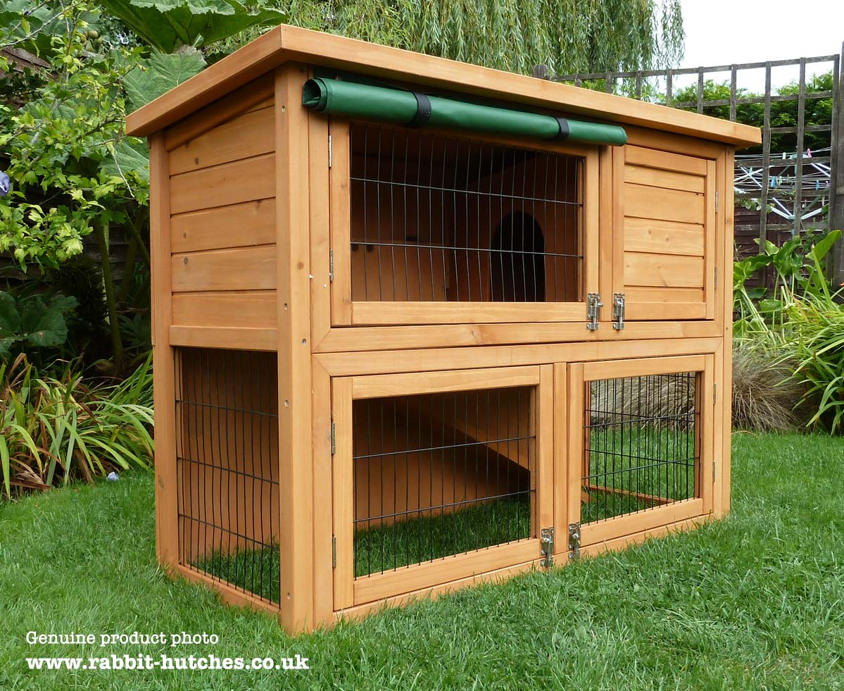 Open floor cheap rabbit hutch
