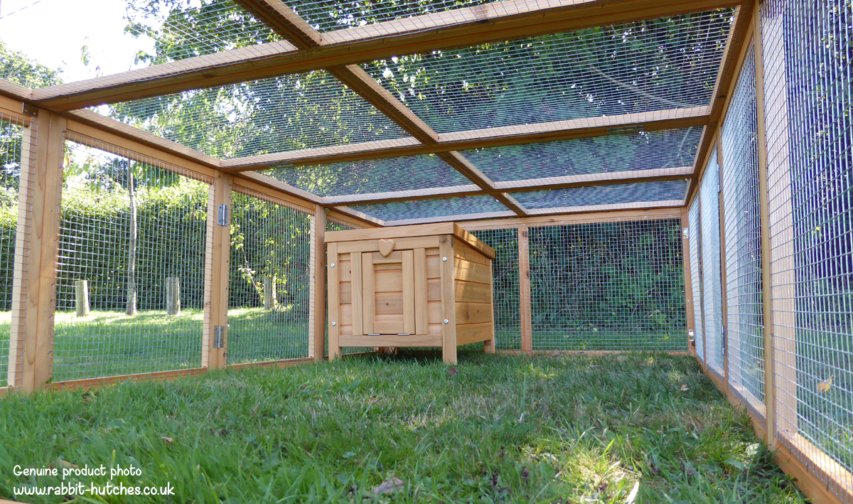Large Rabbit Run And Hutch