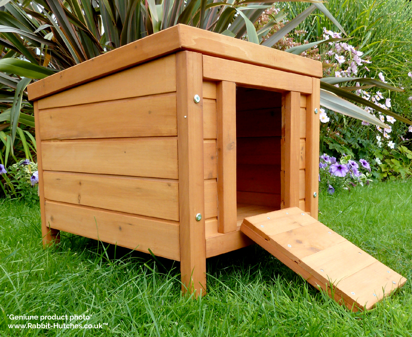 Small House For Rabbits, Guinea Pigs and Tortoises