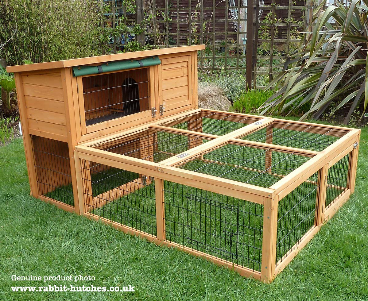 Rabbit Run For Highgrove Hutch